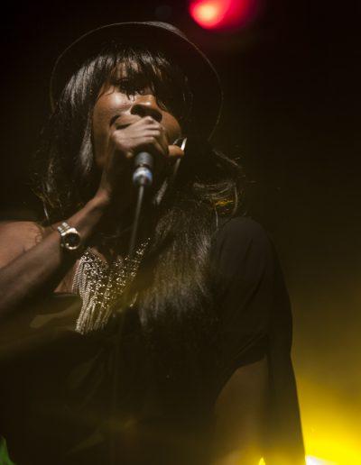 Concert reggae. Bruxelles. Mai 2016. Photographie événementielle